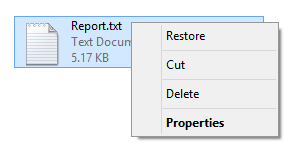 Recycle Bin Recover